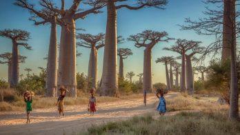 Traveling to Madagascar