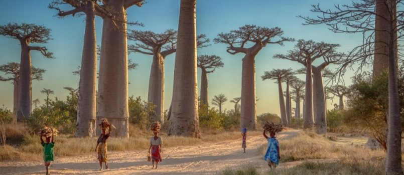Traveling to Madagascar