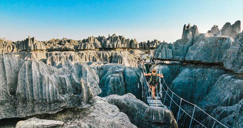 Travel Destinations in Madagascar for Nature Lovers